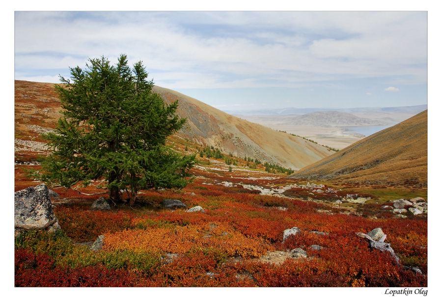 """фото """"Краски осени"""" метки: пейзаж, путешествия, Азия, осень"""