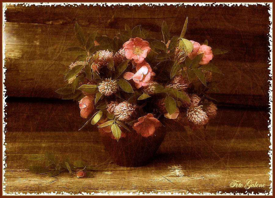 """фото """"Цветочки в горшочке"""" метки: натюрморт,"""