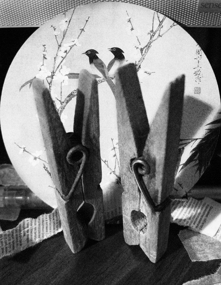 "фото ""love is...."" метки: черно-белые, натюрморт,"