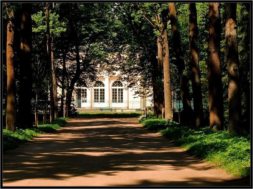 "фото ""тенистые аллеи Павловского парка."" метки: пейзаж, архитектура, лето"