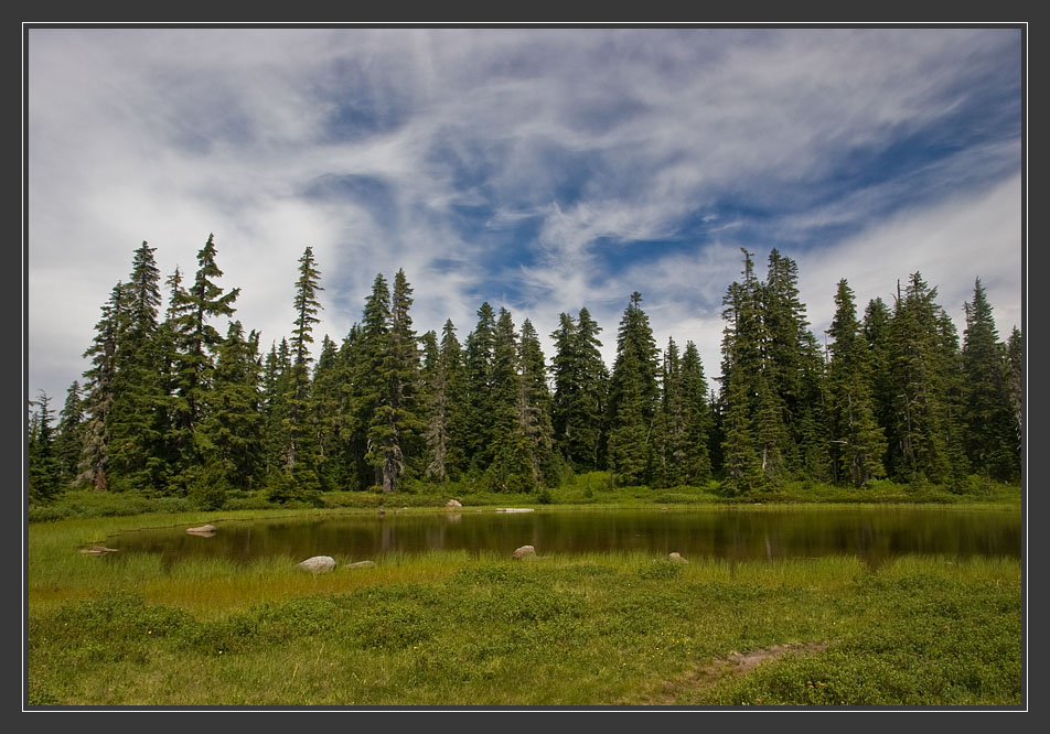 """фото """"Хоровод вокруг озера"""" метки: пейзаж, вода, лес"""