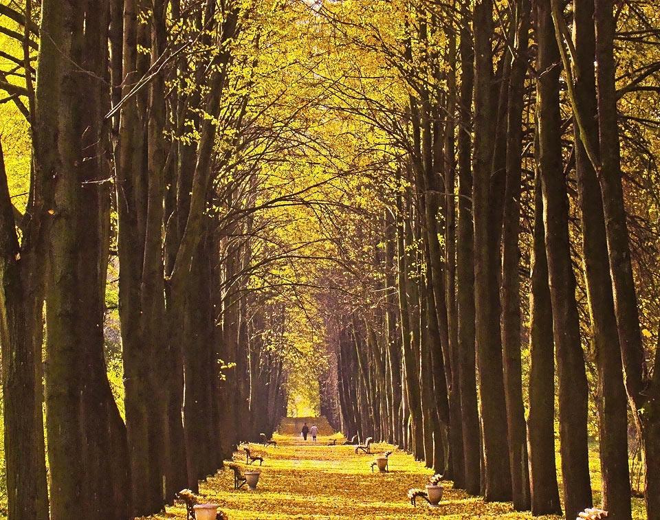 """фото """"Осенняя пора..."""" метки: ,"""