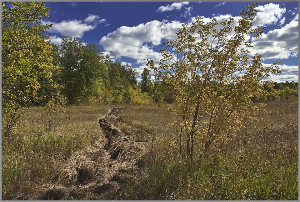 """фото """"Сентябрь..."""" метки: пейзаж, осень"""