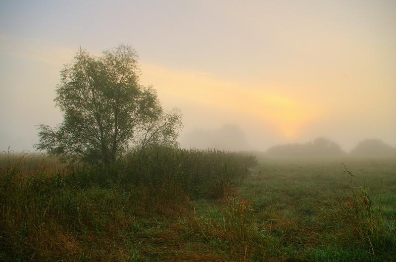 """фото """"прохладное утро в конце августа"""" метки: пейзаж,"""