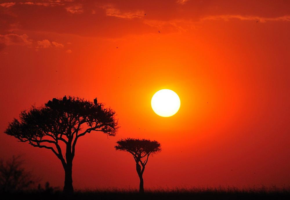 "фото ""African sanset"" метки: пейзаж, закат"