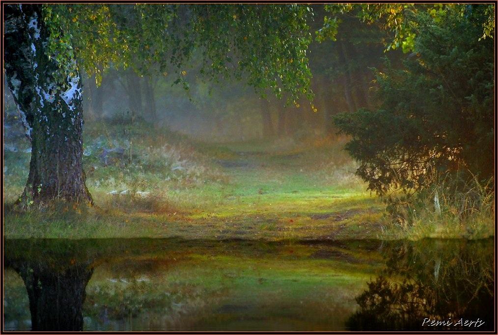 "фото ""early in the morning"" метки: пейзаж, вода, закат"