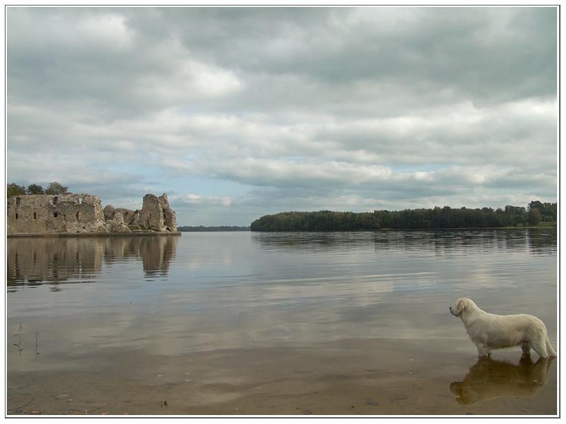 """фото """"Про реку, руины и собаку 2"""" метки: ,"""