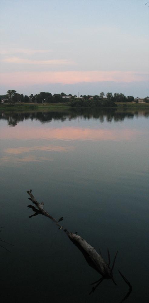"""фото """"дерево спит"""" метки: пейзаж, вода"""