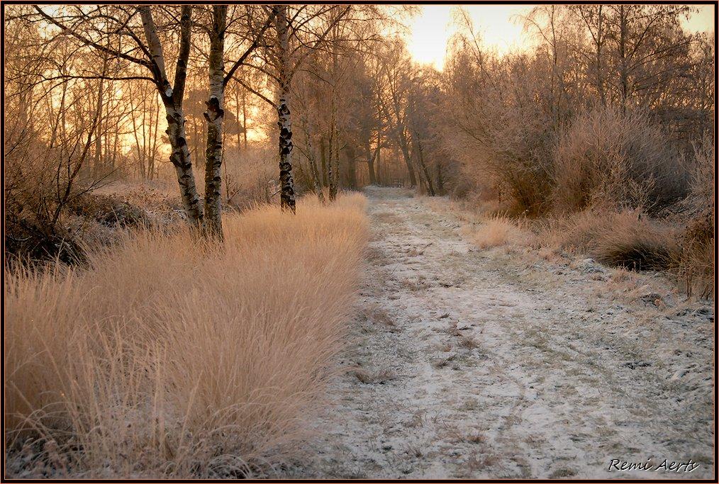 """фото """"***"""" метки: пейзаж, закат, осень"""