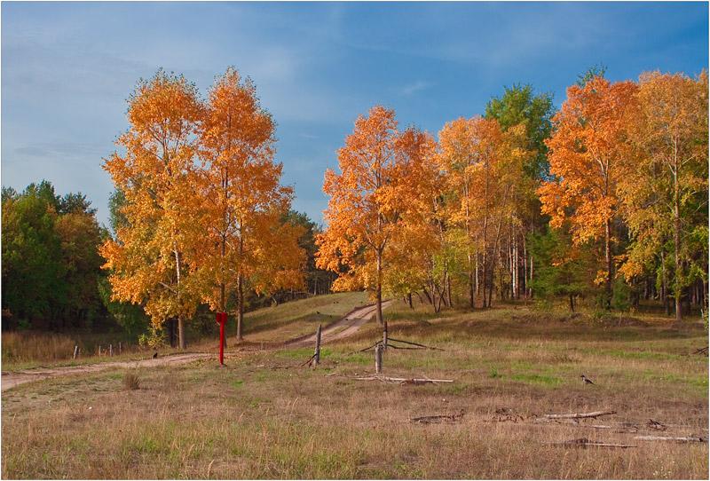 """фото """"Осень"""" метки: ,"""