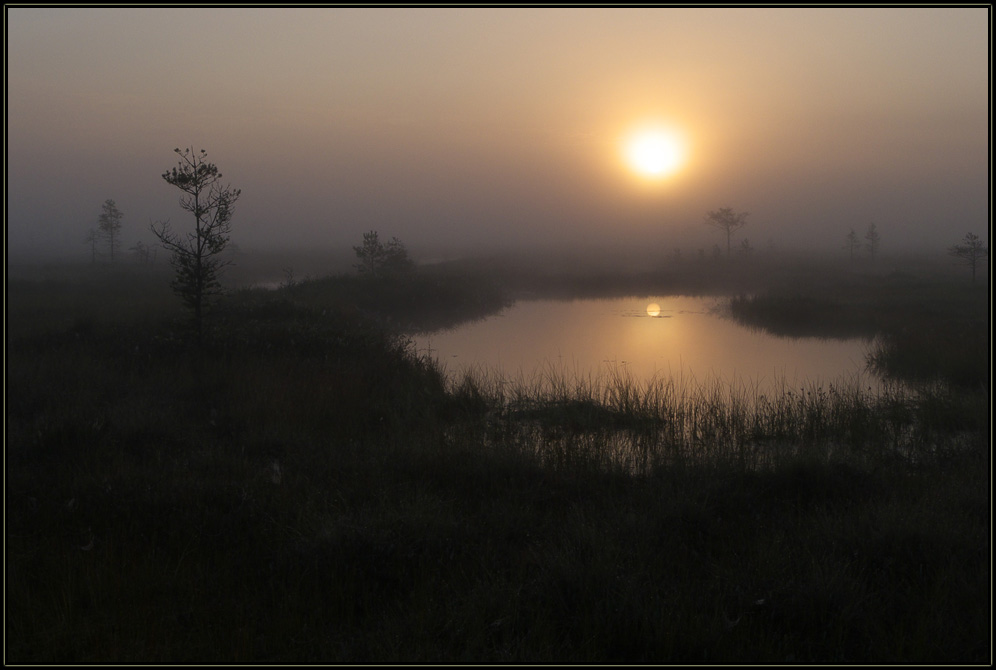 "фото ""Нежное утро."" метки: пейзаж, закат"