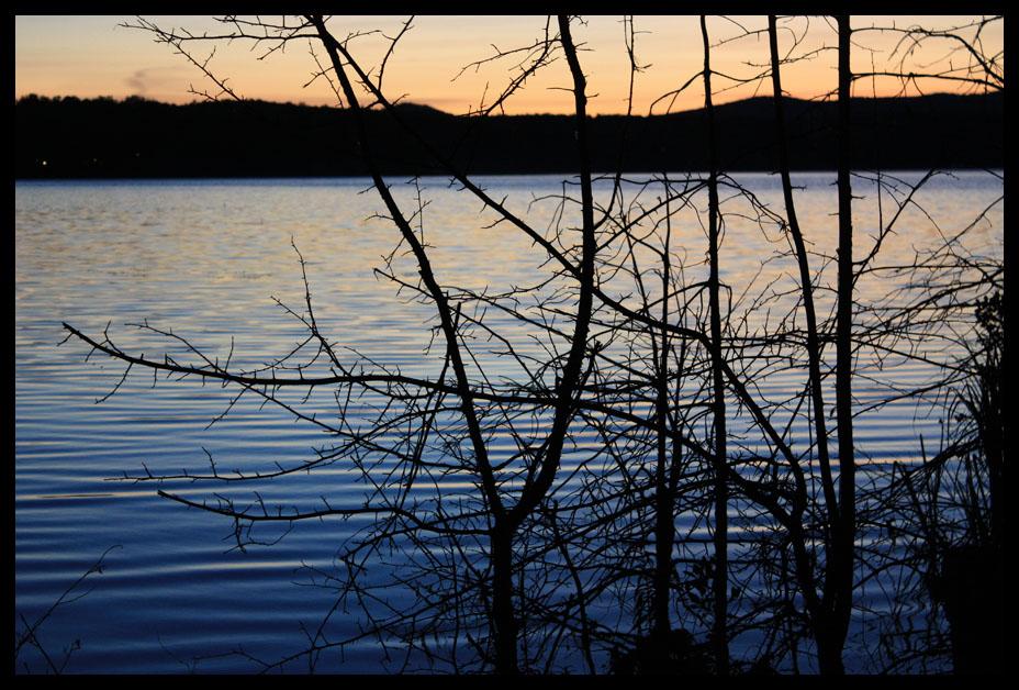 """фото """"Веткографика"""" метки: пейзаж, закат, ночь"""