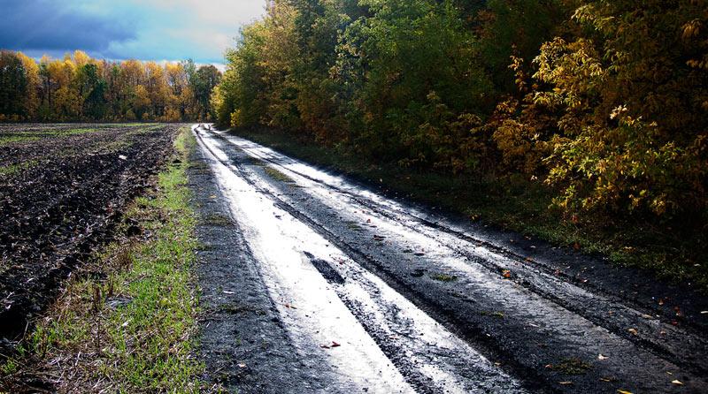 """фото """"После дождя. Осенняя."""" метки: пейзаж, осень"""