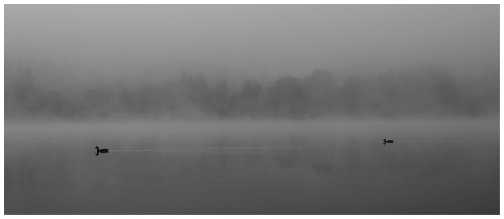 "фото ""on the way"" метки: пейзаж, черно-белые, вода"