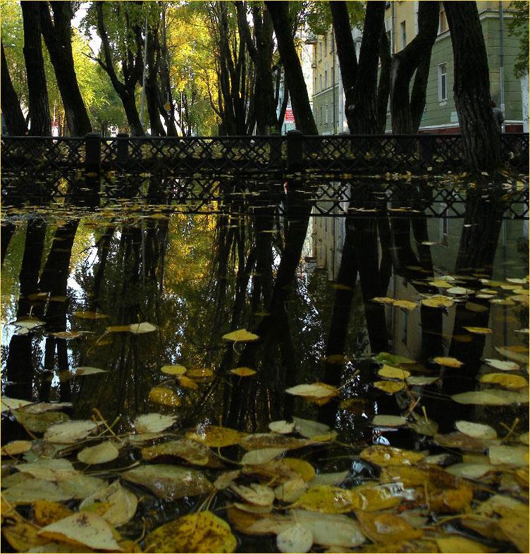 """фото """"Осень..."""" метки: ,"""