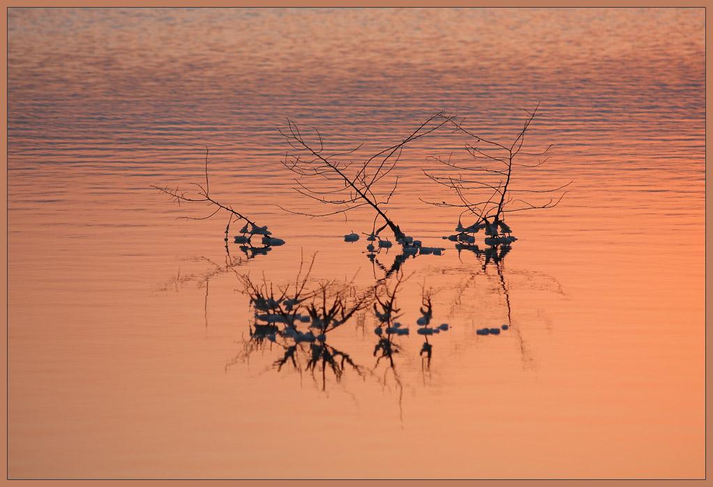 "фото ""Dawn of the Dead Sea (at the dawn of life)"" метки: пейзаж, вода, закат"