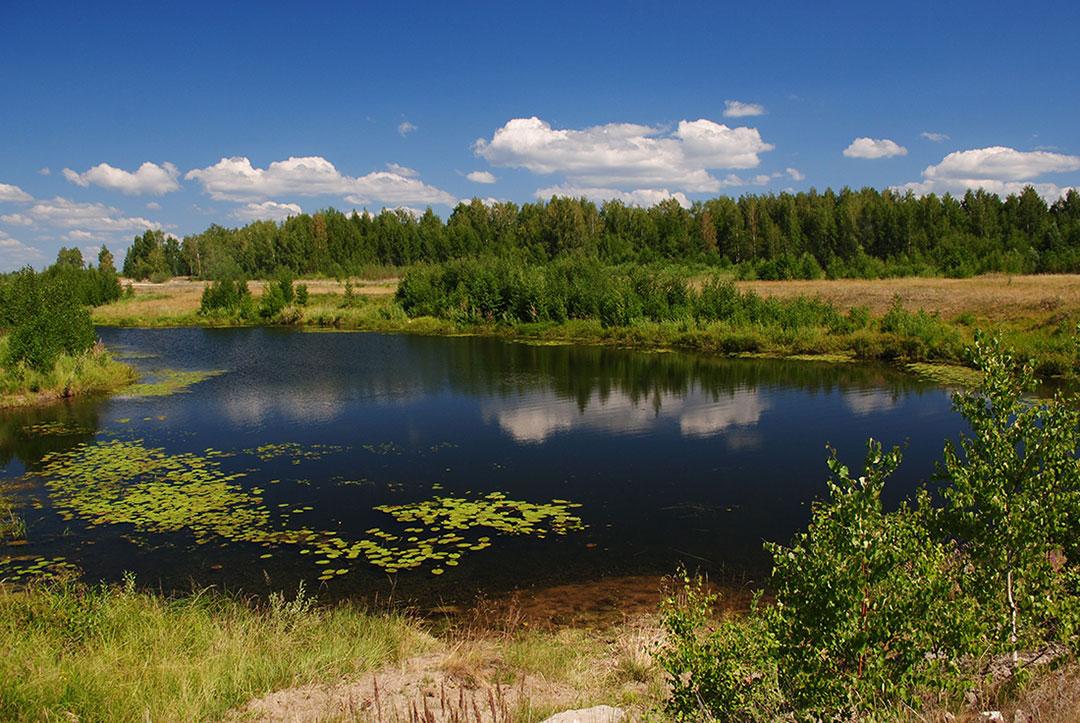 "фото ""Летний день"" метки: пейзаж, вода, лето"