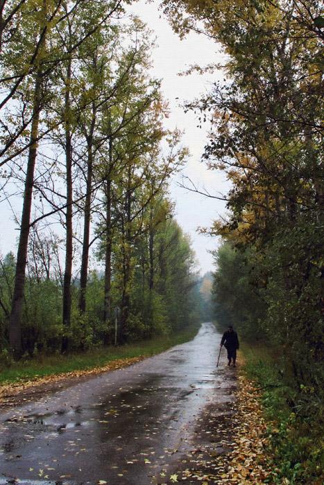 """фото """"Дороги, которые мы выбираем."""" метки: пейзаж, осень"""