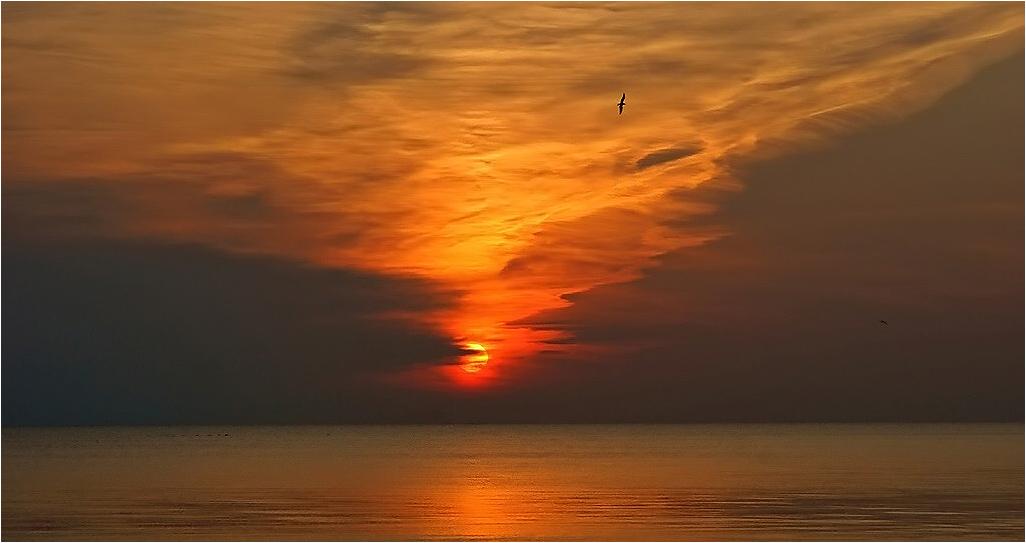 "фото ""Ладога  08:06:59"" метки: пейзаж, закат"