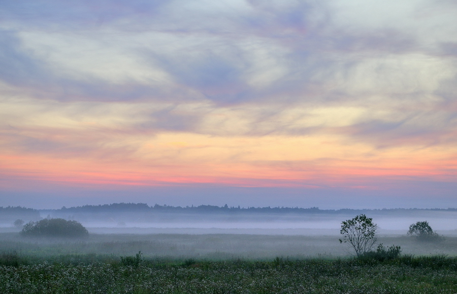 """фото """"нежные краски июльского утра"""" метки: пейзаж,"""