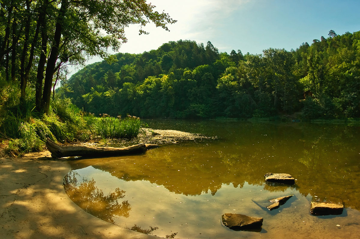 """фото """"У реки"""" метки: пейзаж, лето"""