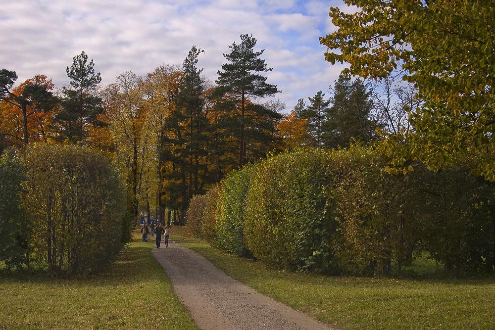 "фото ""гулять по осени.."" метки: пейзаж, осень"