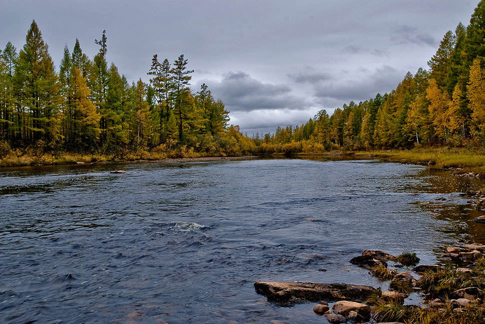 """фото """"На реке..."""" метки: пейзаж, вода, осень"""