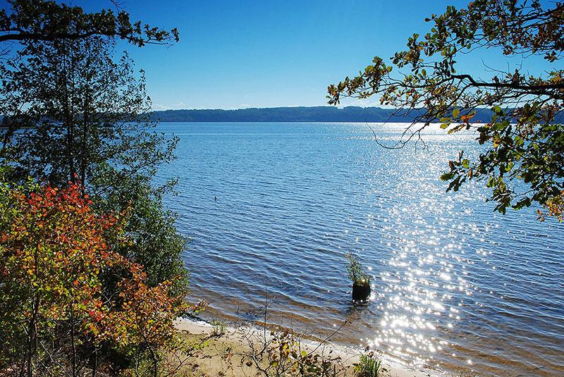 """фото """"Солнечная дорожка"""" метки: пейзаж, вода, лето"""