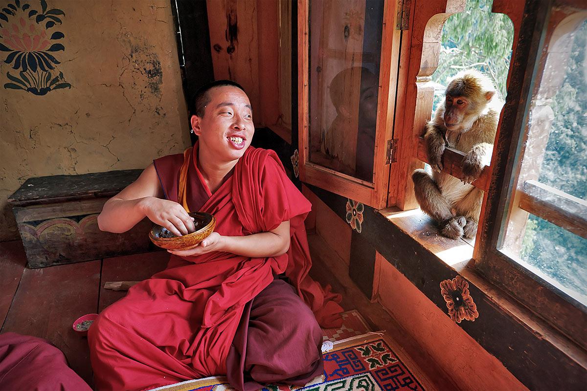 Сделать, картинки с монахом приколы