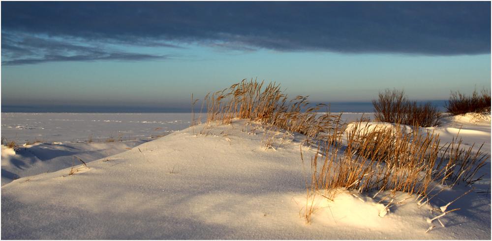 дети так зимние туры на белое море земляного