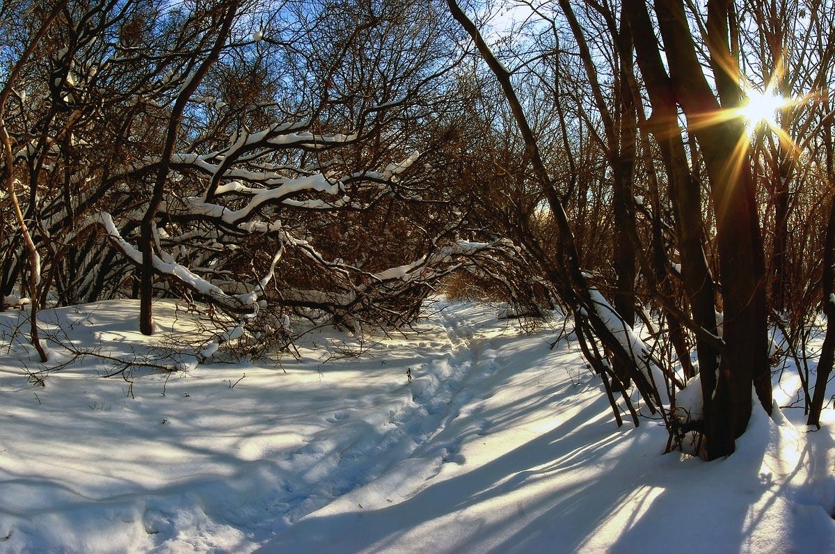 """фото """"Прошлогодний снег"""" метки: пейзаж, зима"""