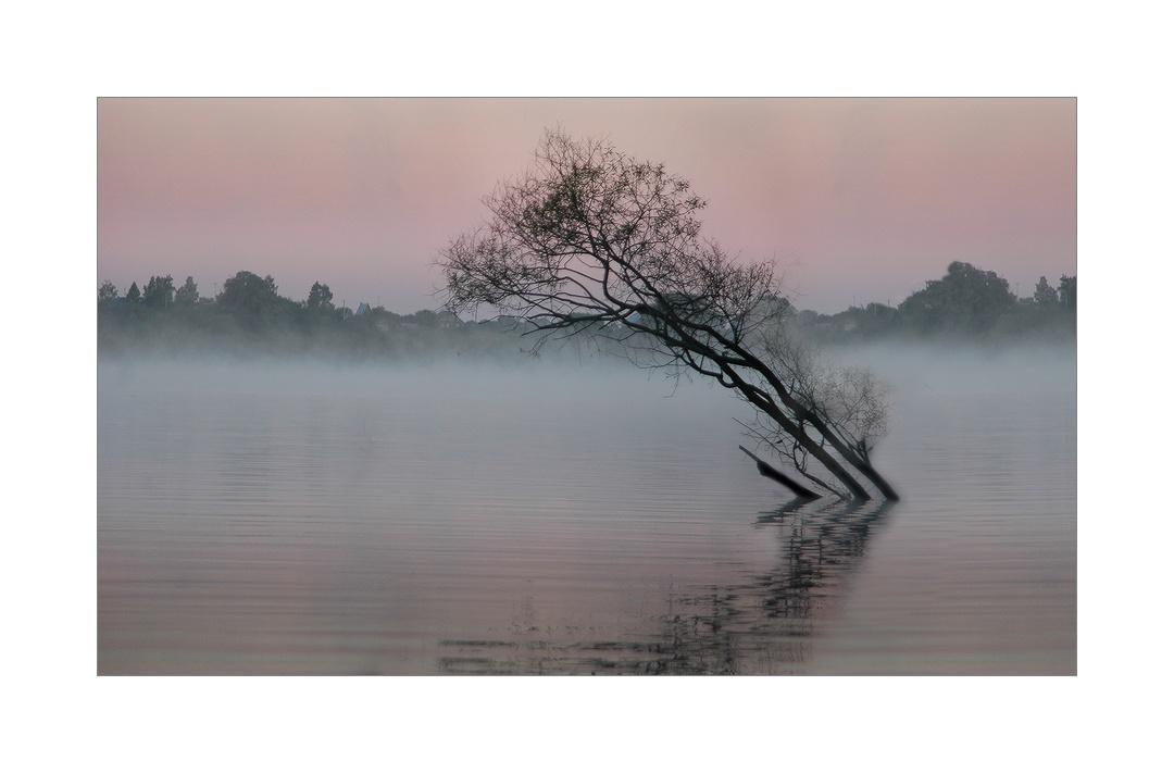 """фото """"лиловый рассвет"""" метки: пейзаж, закат"""