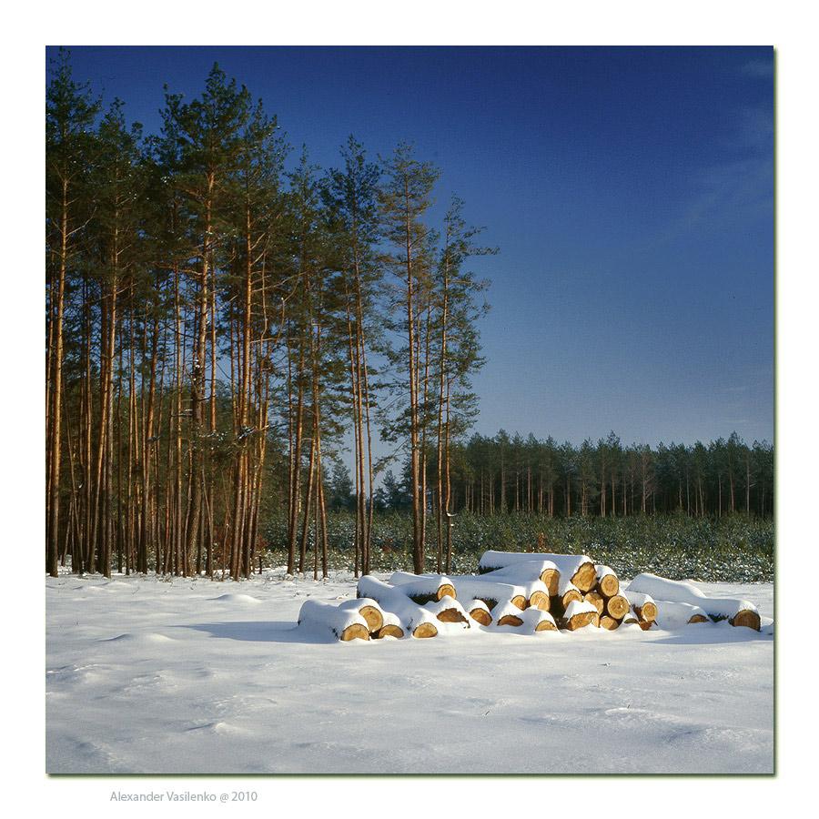"""фото """"Зимняя природа"""" метки: пейзаж, зима, лес"""