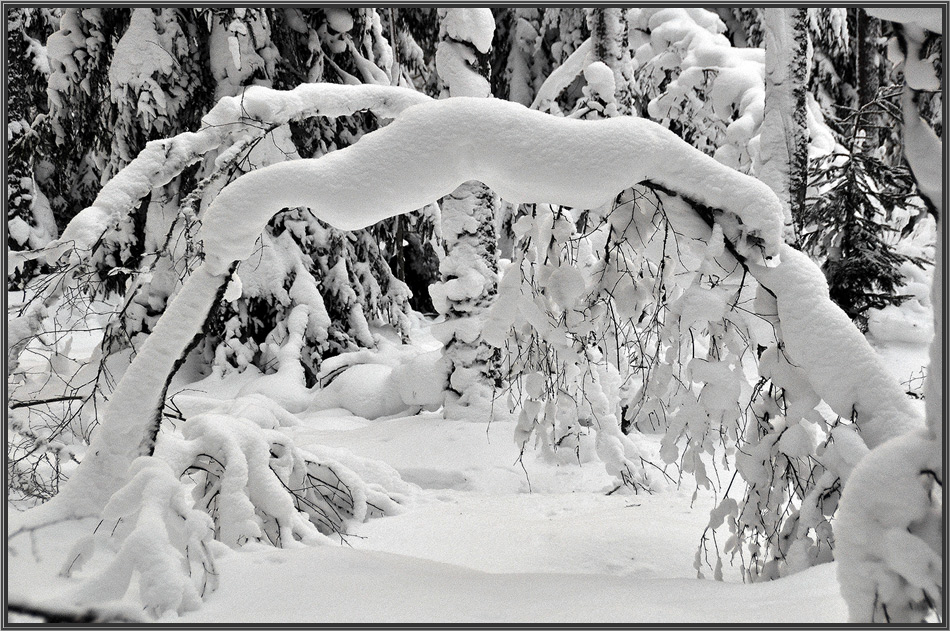 """фото """"Ворота"""" метки: пейзаж, зима"""
