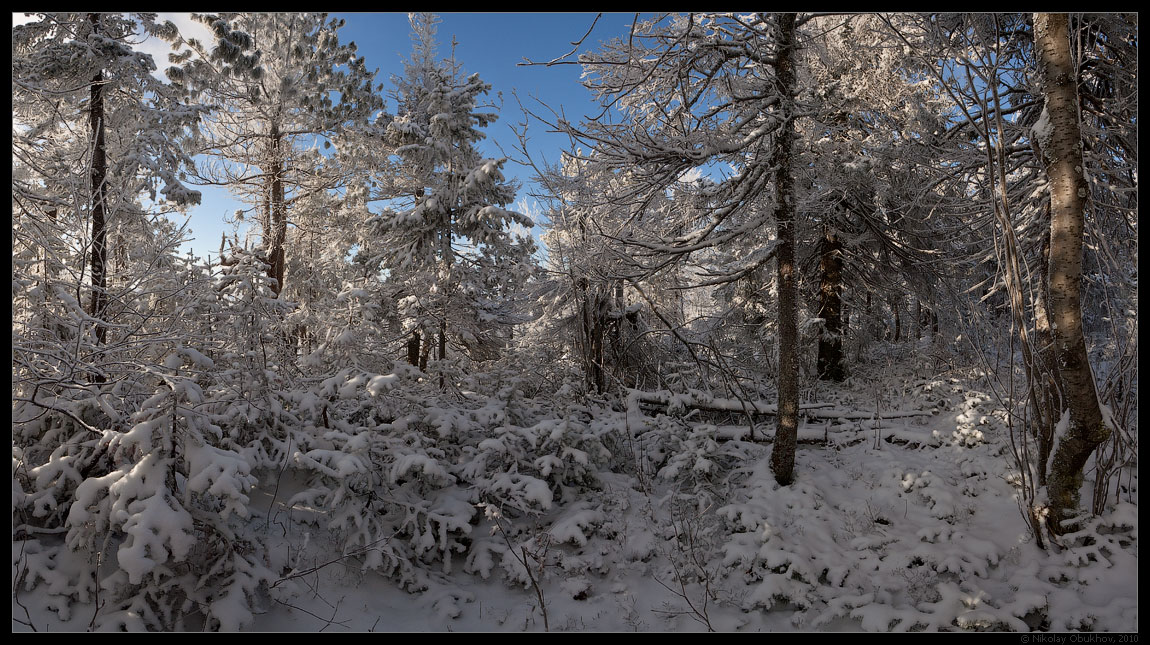 """фото """"Зимняя / 0205_0007-0011"""" метки: пейзаж, панорама, зима"""