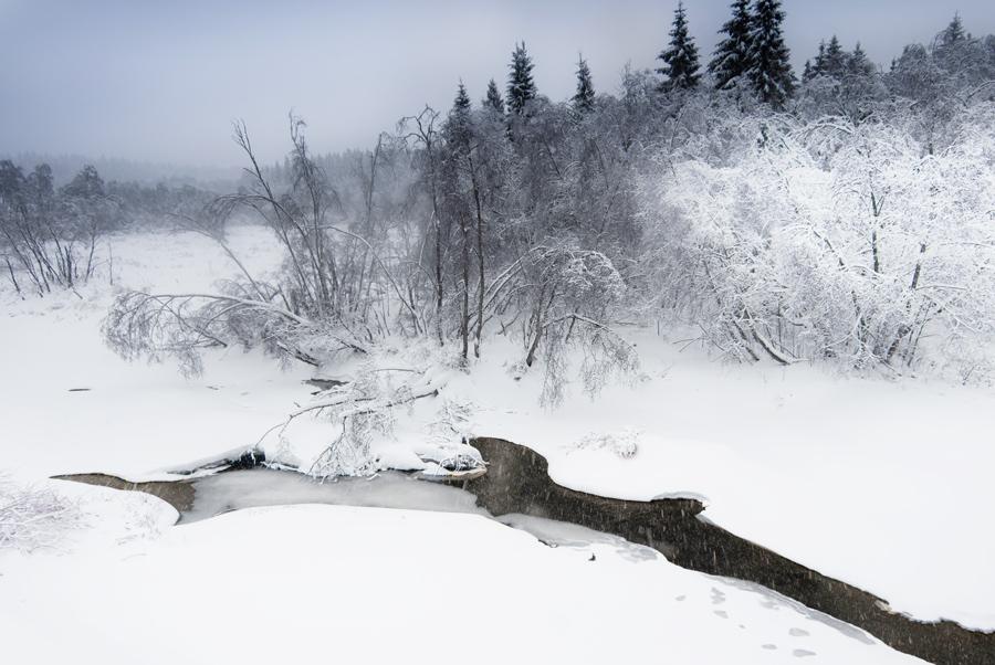 "фото ""Подмосковная..."" метки: пейзаж, зима"