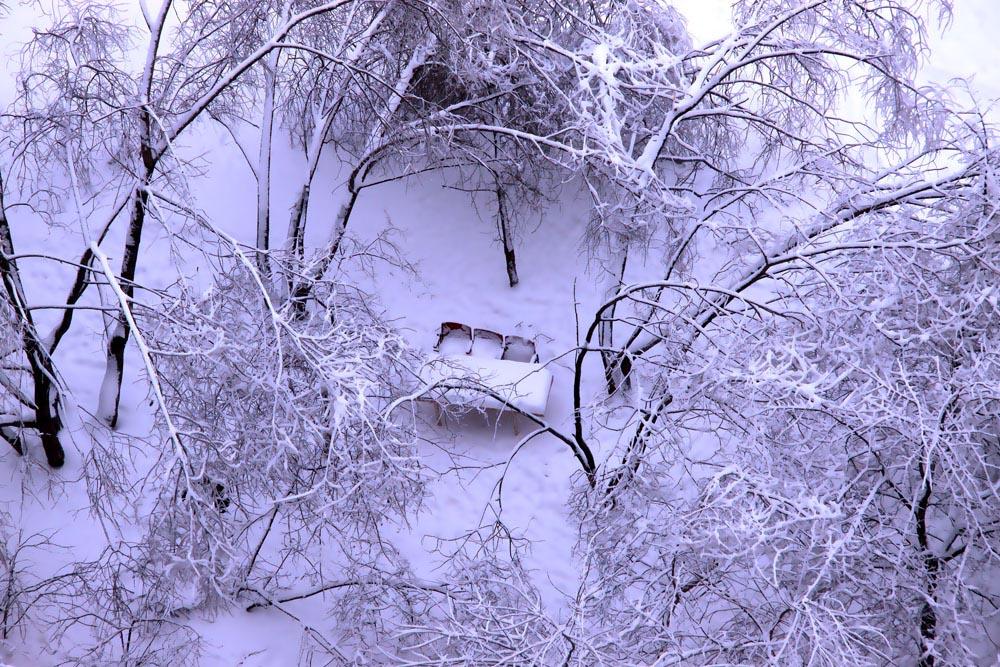 """фото """"И пришла зима"""" метки: пейзаж, зима"""