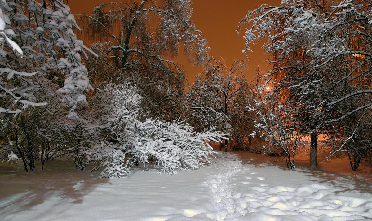 Новогодние праздники в Москве: куда пойти бесплатно