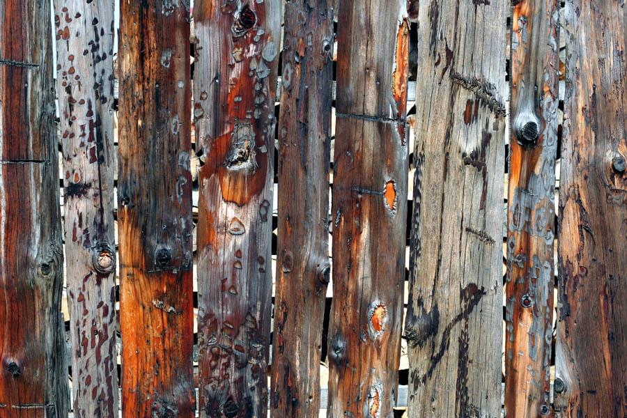 "photo ""***"" tags: macro and close-up, fragment,"
