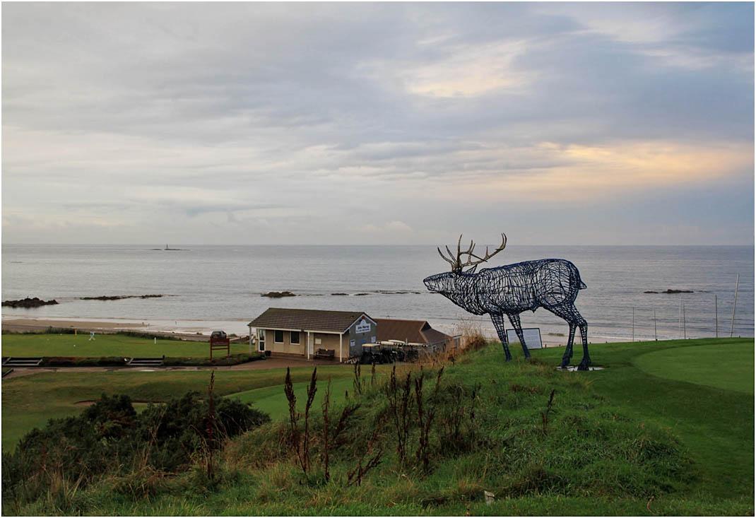 """фото """"Синий олень."""" метки: пейзаж, вода"""