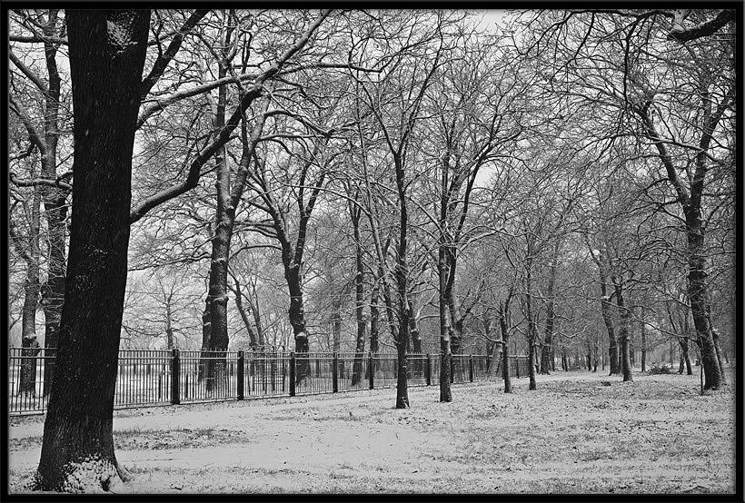 """фото """"***"""" метки: черно-белые, пейзаж, зима"""