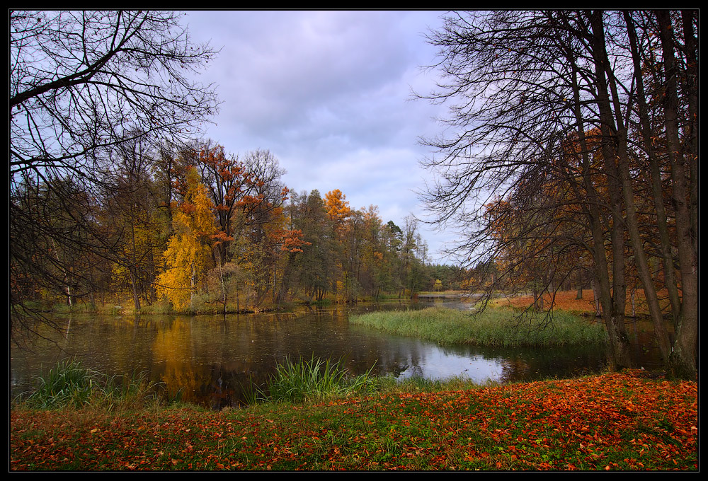 "фото ""На краю осени"" метки: пейзаж, вода, осень"