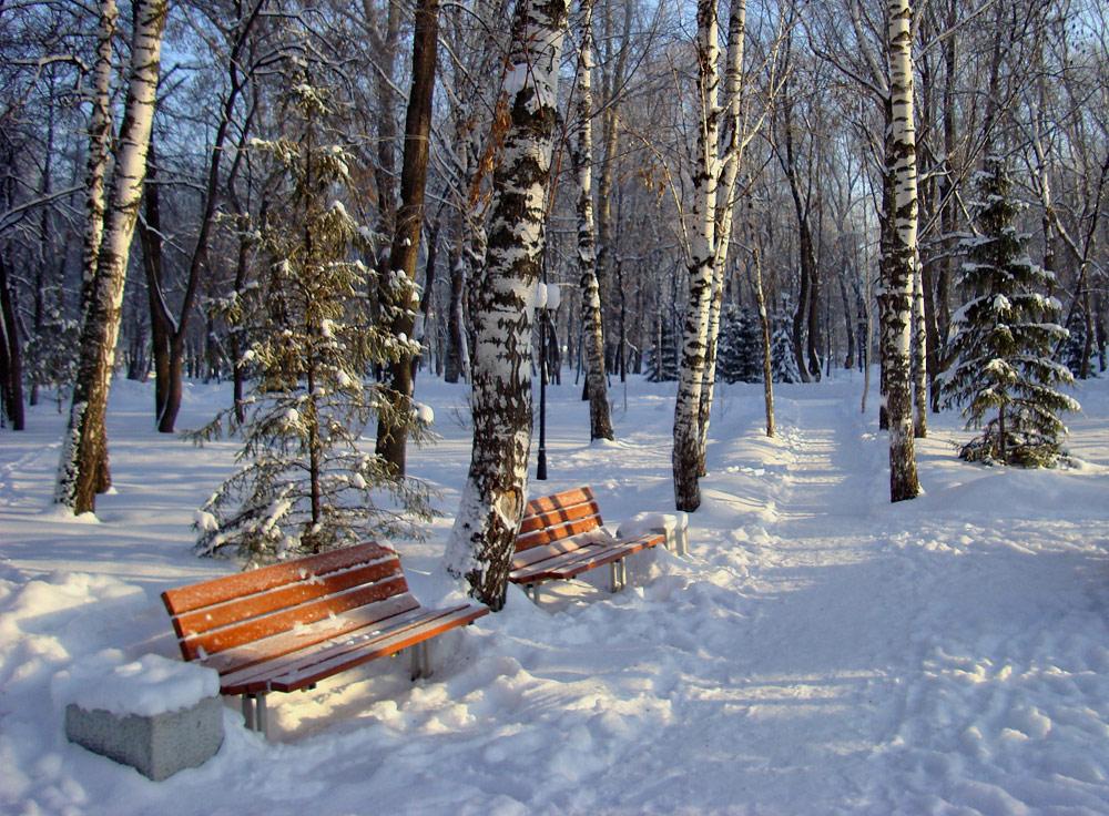 """фото """"...посидим?..."""" метки: пейзаж, зима"""