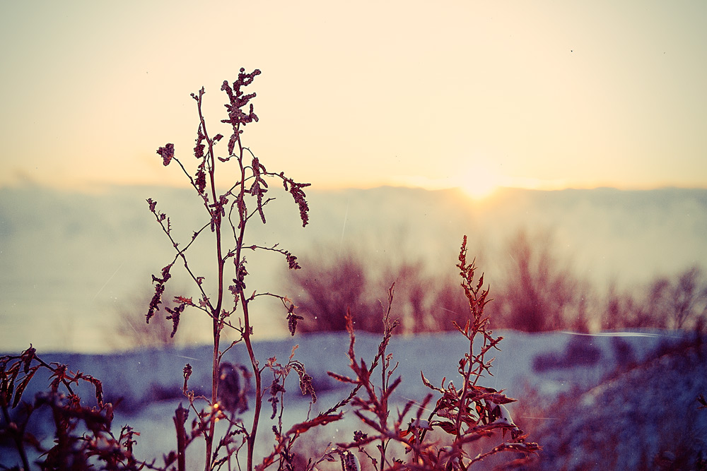 "фото ""Зима, Детство"" метки: пейзаж, закат, зима"