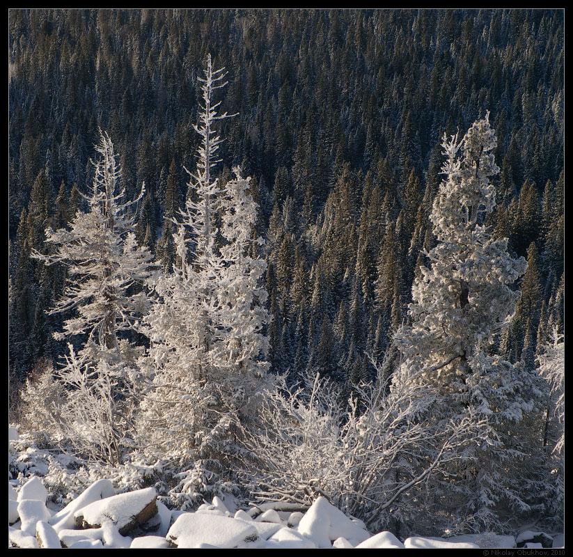 "фото ""На склоне / 0205_0027"" метки: пейзаж, горы, зима"