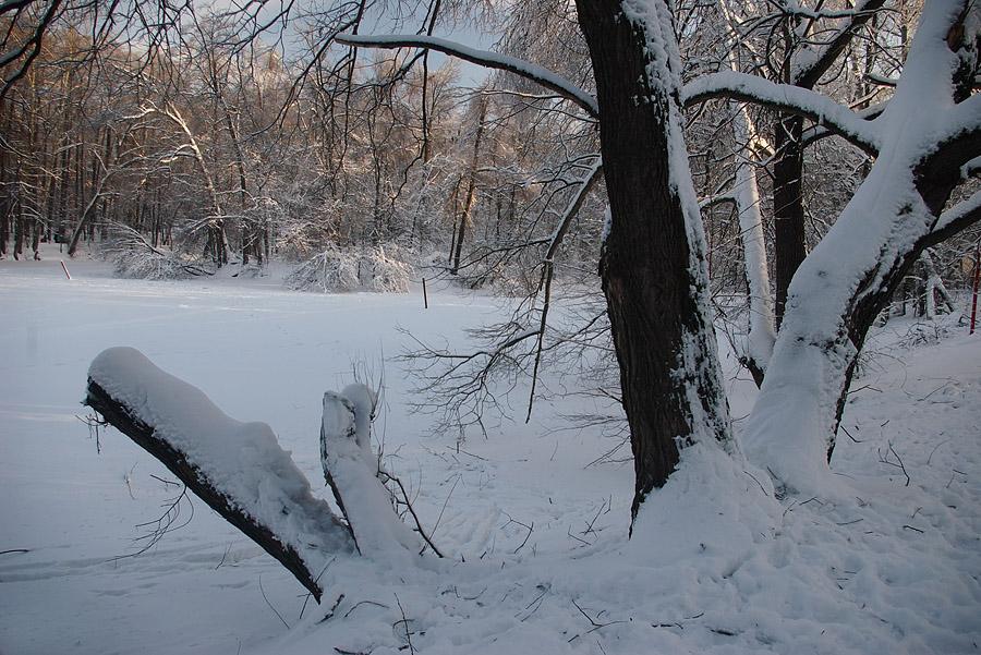 """фото """"Притихший пруд."""" метки: пейзаж, зима"""