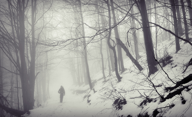 "photo ""Trought the mist"" tags: landscape, winter"