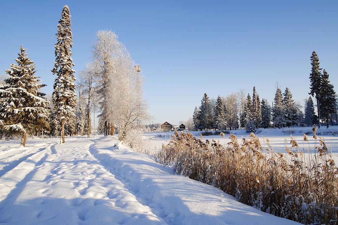"""фото """"Замёршее  озеро"""" метки: пейзаж, зима"""