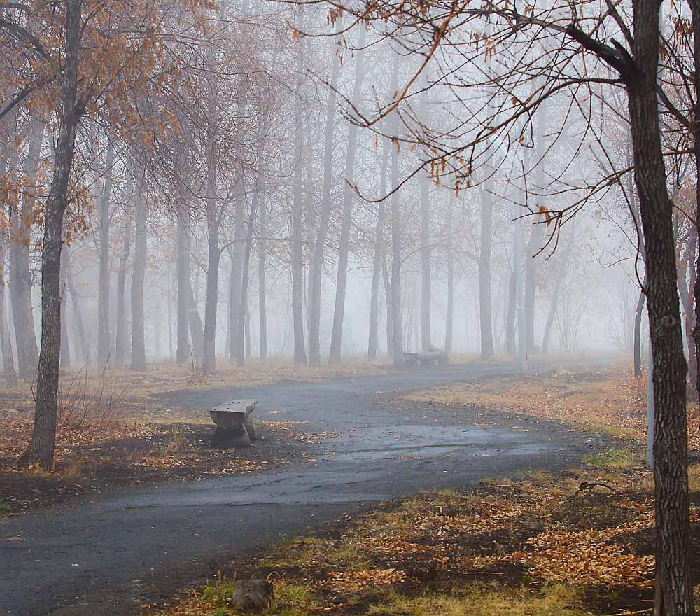 Грустные осенние картинки одиночество круг толщиной
