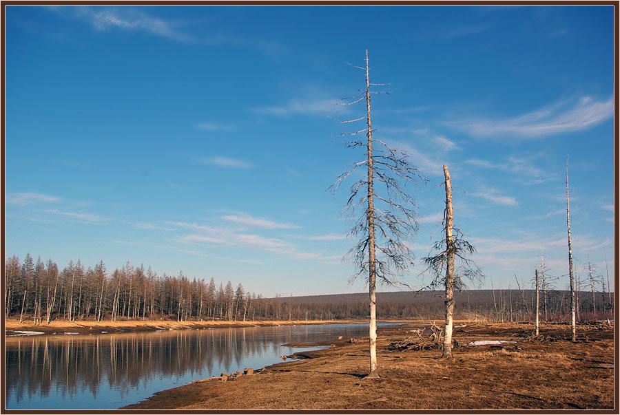 картинки природа якутии весна очень